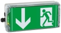 Luminaire (indicatif) antidéflagrant (Ex) de voie de secours /d'orientation