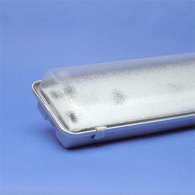 TECHNOLUX - Waterdicht armatuur gesloten type methacrylaat 2x18W VVG IP65 clips kunststof