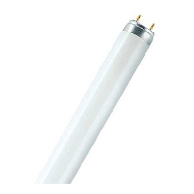 LEDVANCE - Lumilux T8 36W 840 4000K 3100lm blanc clair G13 1000mm Ø26mm