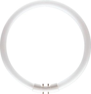 PHILIPS - Master TL5 Circular 22.3W 2GX13 2700K 1800lm CRI85 dimbaar