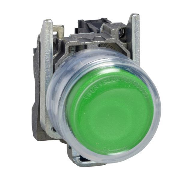 TELEMECANIQUE - Bouton-poussoir vert Ø22 - à impulsion - 1F