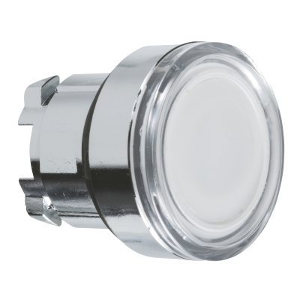 TELEMECANIQUE - Kop voor verlichte drukknop - Ø22 - wit - zonder markering