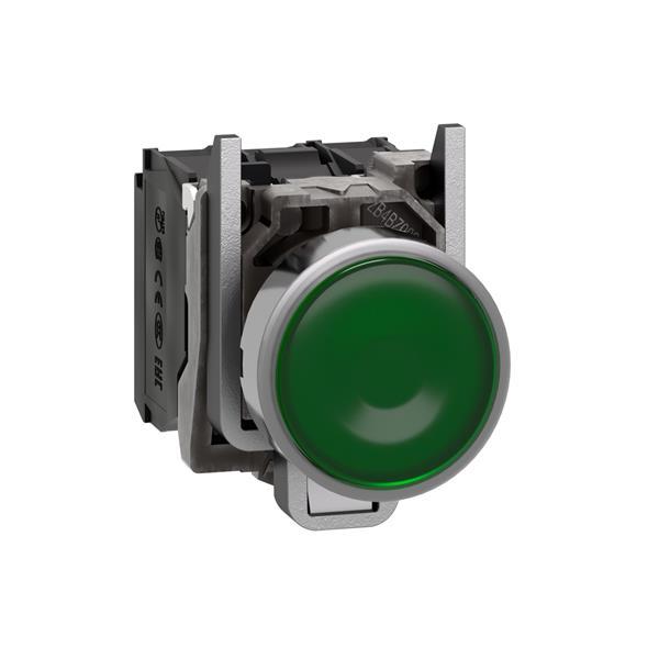 TELEMECANIQUE - Verlichte drukknop groen Ø22 - impulscontact verzonken - 240V - 1NC + 1NO
