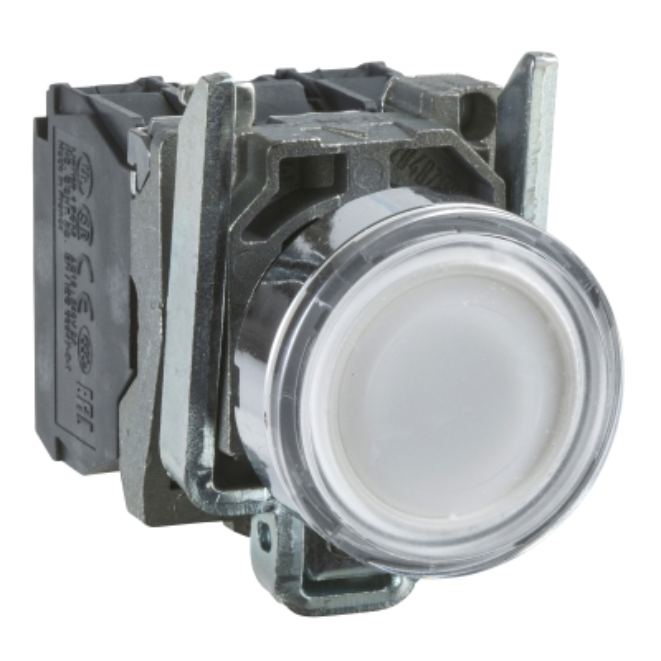 TELEMECANIQUE - Verlichte drukknop wit Ø22 - impulscontact verzonken - 240V - 1NC + 1NO