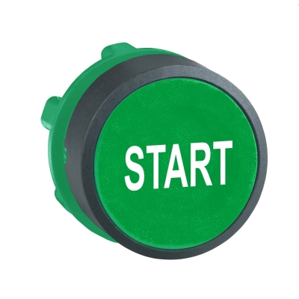 TELEMECANIQUE - kop voor drukknop - Ø22 - groen - START