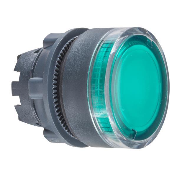 TELEMECANIQUE - kop voor verlichte drukknop - Ø22 - groen - zonder markering