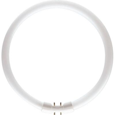 PHILIPS - Master TL5 Circular 60W 2GX13 3000K 5000lm CRI85 dimbaar