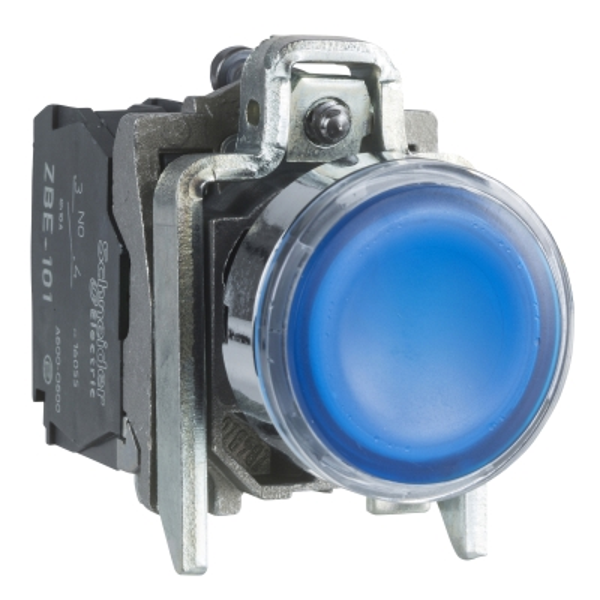 TELEMECANIQUE - Verlichte drukknop blauw Ø22 - impulscontact verzonken - 24V - 1NC + 1NO
