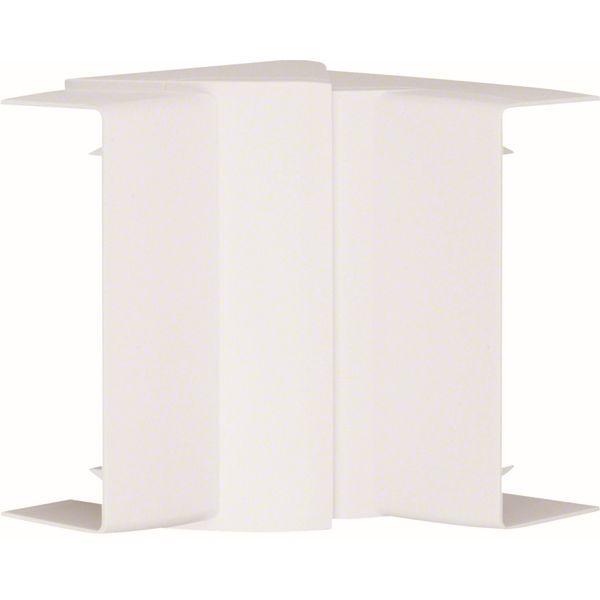 TEHALIT - Angle intérieur pour LFF401100