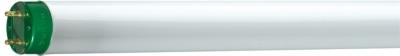 PHILIPS - Master TL-D Eco 32W G13 3000K 3000lm CRI>80