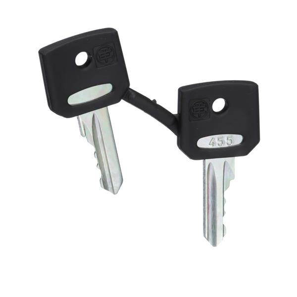 TELEMECANIQUE - sleutel - 455 - set van 2