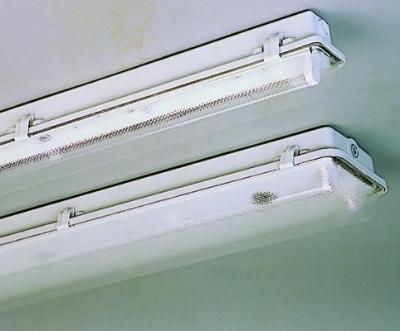 TECHNOLUX - Luminaire étanche type fermé méthacrylate 1x18W VVG IP65 clips plastique