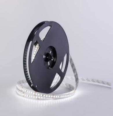 Integratech - LED strip IP33 168 LED smd 2835 24V wit 5m
